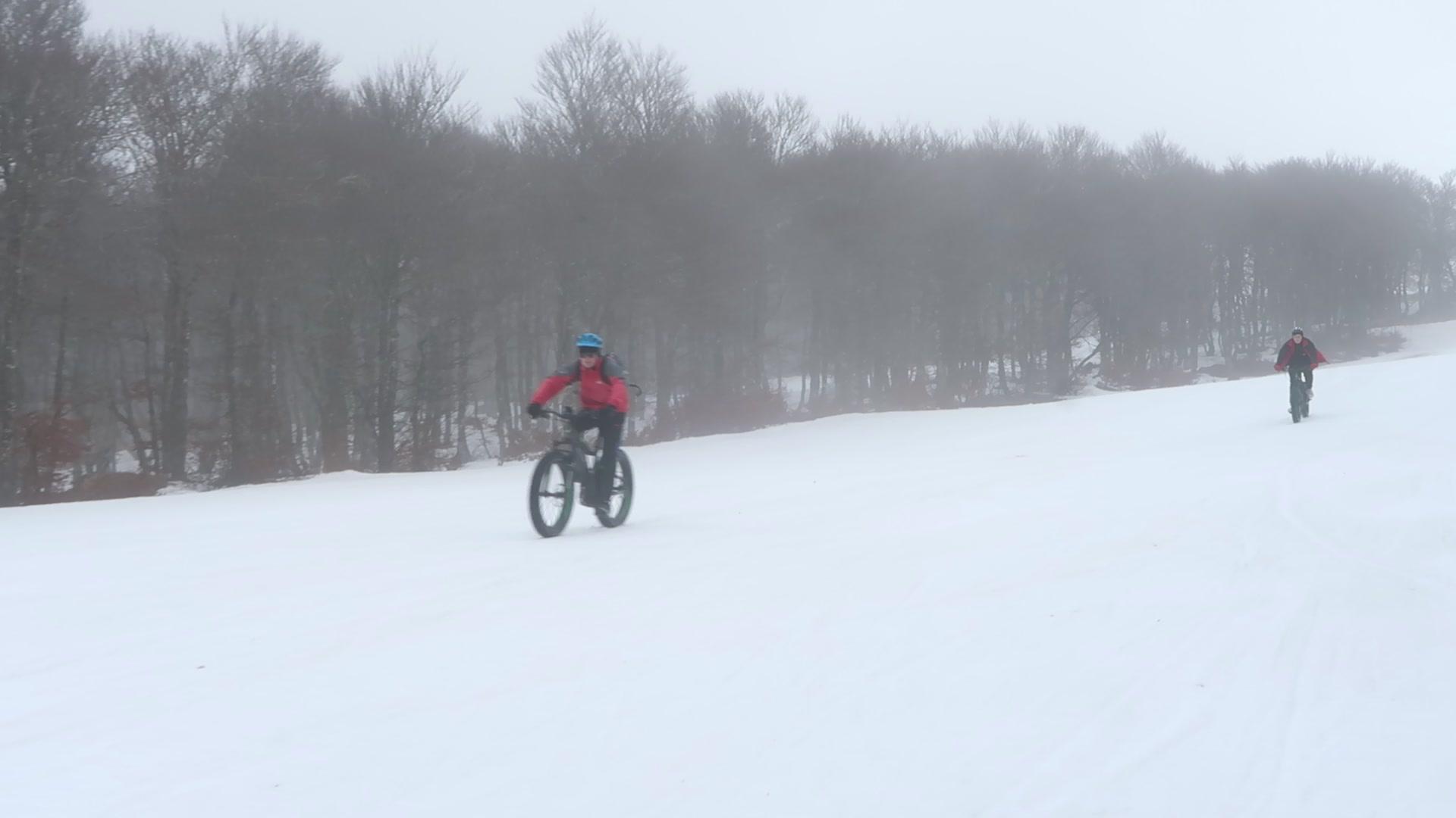 Fat Bike électrique