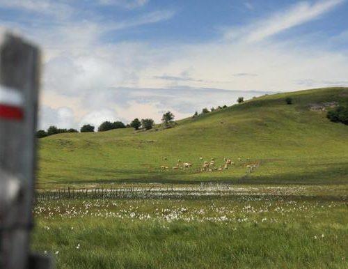Tourisme Aubrac – Préparez vos vacances sur l'Aubrac en Aveyron
